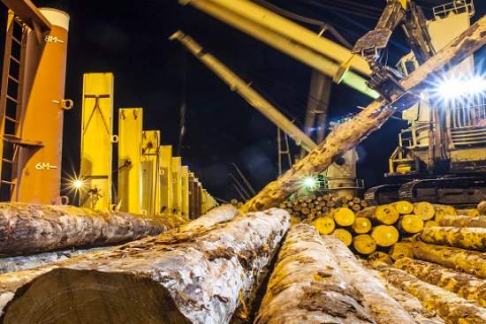 Export log prices rise with gains boosted by falling Kiwi